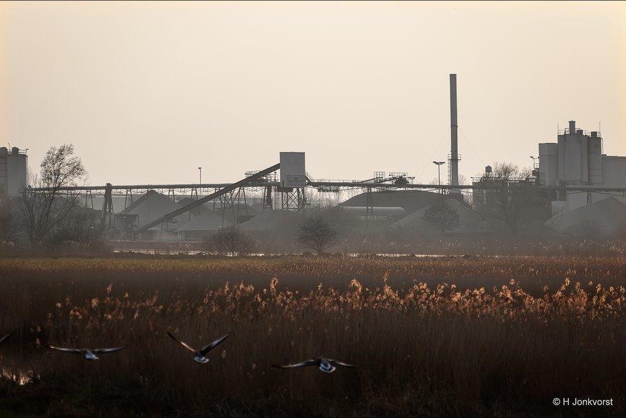 natuur en industrie, Natuurreservaat de Brommerd, Natuurgebied de Brommerd, Hasselt industrie, Hasselt, industriegebied, industrieterrein, Natuur Hasselt, Canon eos R, Canon EF 28-300mm f3.5-5.6 L IS USM, Fotografie, Foto