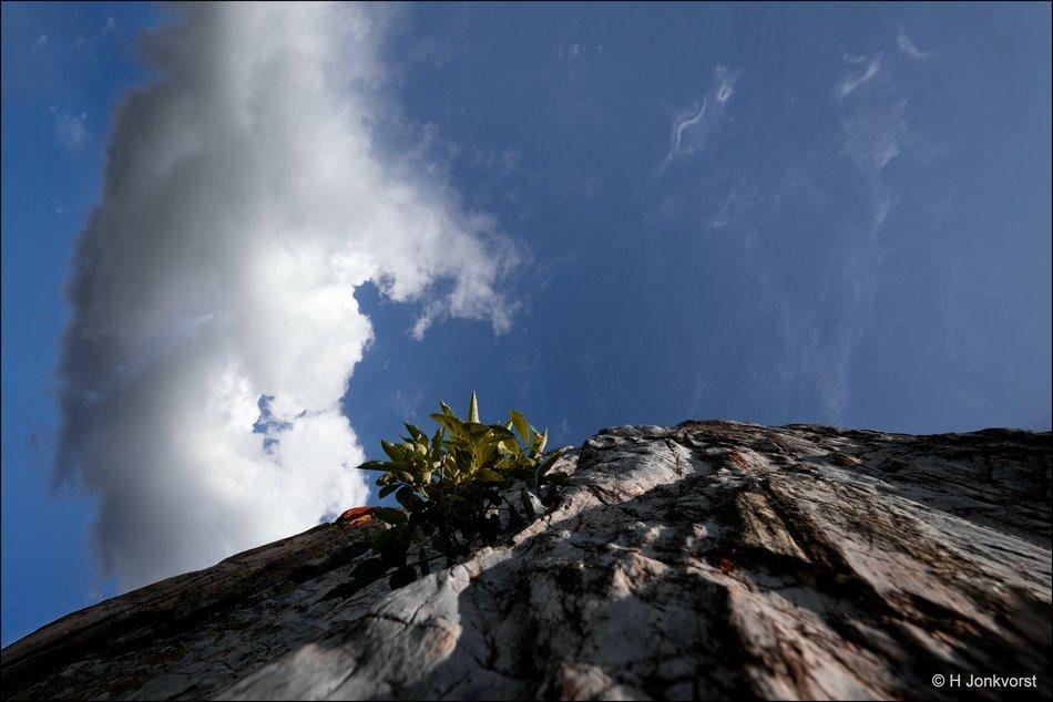 Pieter Zandt kunstwerk, Pieter zandt College, Staphorst, gezichtsbedrog, gezichtsbedrog fotografie, Perspectief fotografie, opstijgende wolk, Fujifilm XT2, Fujifilm XF 8-16mm f2.8 R LM WR, Fotografie, Foto, Photography