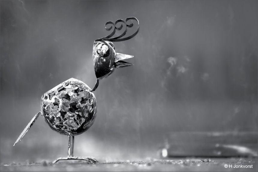 vreemde vogel, fantasievogel, creatief met ijzer, ijzeren vogel, hanenkam, kunst op straat, onnozele blik, kunst, Canon eos R, Canon EF 200mm f2L IS USM, Fotografie, Foto, Photography, Photo