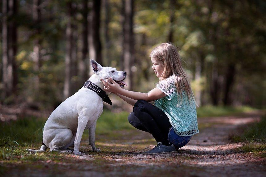 een leven lang vriendschap, maatjes voor het leven, vrienden voor het leven, vriendschap voor het leven, opgroeien met je huisdier, opgroeien met een hond, Wendy, Lady, beschermengel, Canon eos R,  Canon EF 85mm f1.2