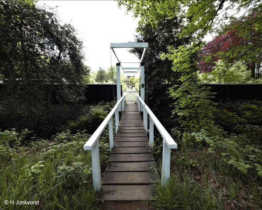 landgoed de Horte, Landhuis de Horte, Franse tuin, symmetrische tuin, mammoetboom, buitenplaats De Horte, tuin in Franse stijl, Fujifilm XT2, Fujifilm XF 16-55mm F2.8 R Lm Wr, Fujifilm XF 8-16mm f2.8 R LM WR, Fotografie