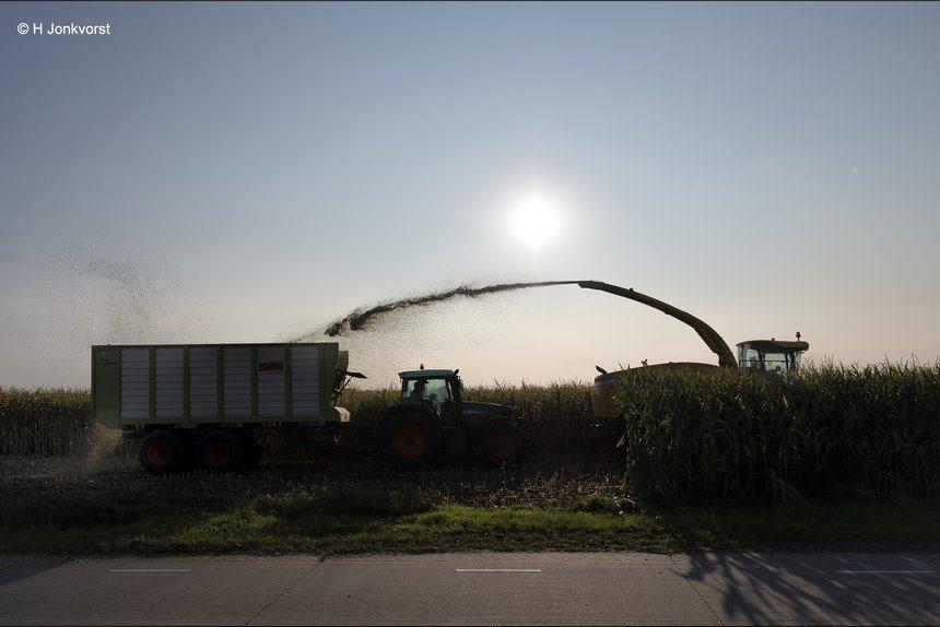 kunst en vliegwerk, samenwerking, maisperceel. maisakker, maisoogst, maisoogst 2020, hakselaar, maishakselaar, silowagen, oogsttijd mais, mais oogsten, oogstseizoen, Fujifilm XT2