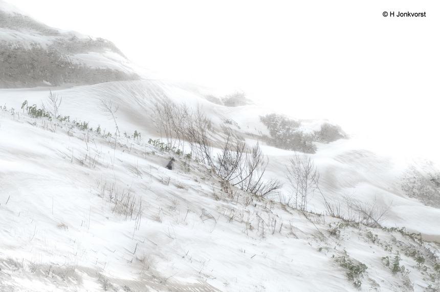 Siberisch, Staphorst, onherbergzaam, sneeuwstorm, gebergte, landschap, Siberisch landschap, winters, barre winter, Siberië, zandafgraving, zandafgraving Rouveen, Fujifilm XT2, Fujifilm XF 16-55mm F2.8 R Lm Wr, Fotografie