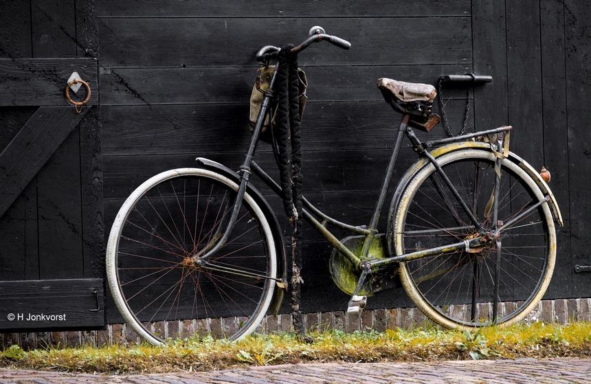 rammelkast, oude rammelkast, fiets decoratie, oude fiets, opoefiets, beuken tegen de wind, e-bike, zwaar fietsen, Fujifilm XT2, Fujifilm XF 50-140mm F2.8 R LM OIS WR, Fotografie, Foto, Photography, Photo