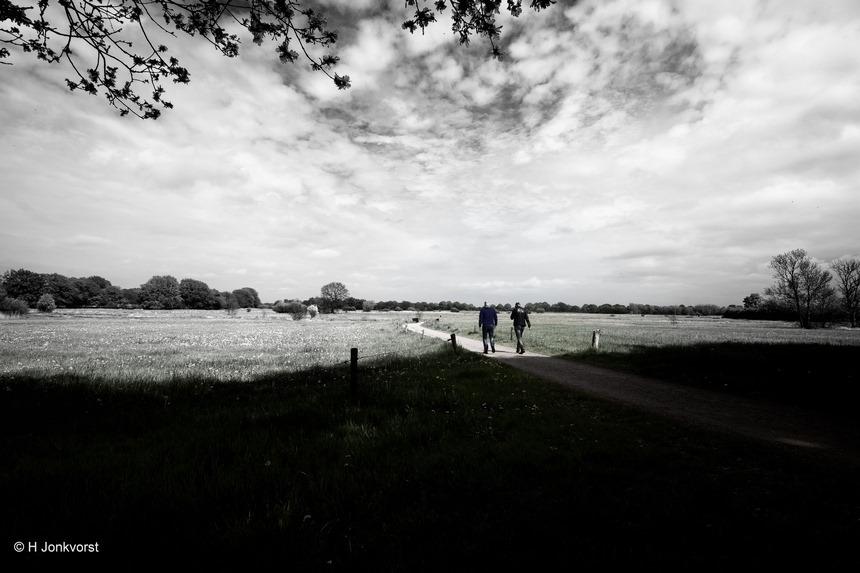De paden op, de lanen in, vooruit met blijde zin, wandelen, wandelen in de natuur, vrij als een vogel, vogelvrij, Reestdal, wandelen is gezond, gevoel van vrijheid, landschap, landschap zwart wit, Fujifilm XT2