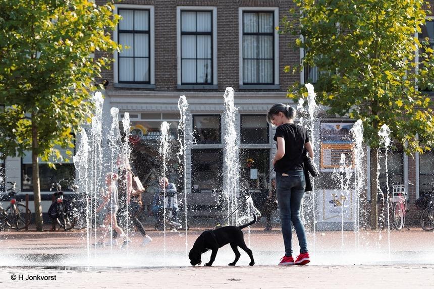 Steenwijk, Steenwijk heeft het, Markt, marktplein, fontein, drinkplaats, vertier, straatfontein, boogspuiter, boogspuiters, Fujifilm, Fujifilm XF 50-140mm F2.8 R LM OIS WR, Fotografie, Foto, Photography, Photo